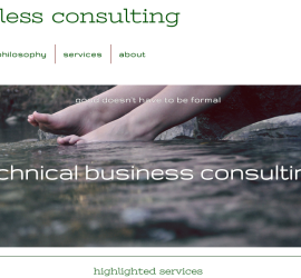shoeless consulting